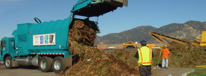 on site dumping green waste Image