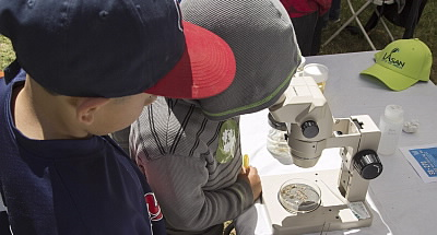Kids using a microscope