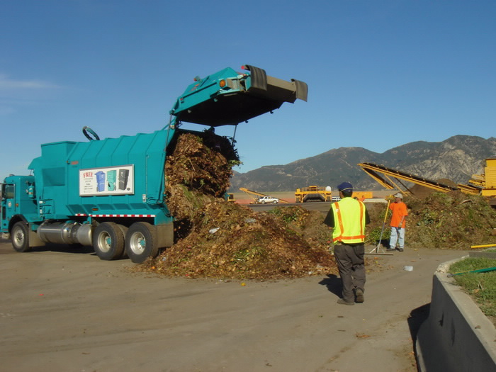 The on-site workers come near the dumped greenwaste