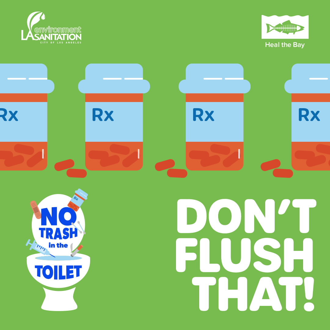 Don't Flush That - RX