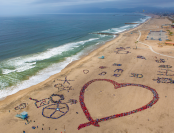 An aerial view of the art formation created by the students on the beach.