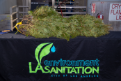 LA Sanitation and Environment oversees the collection of Christmas trees that are recycled and turned into mulch.