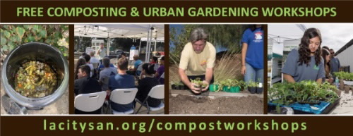 Compost Workshop Graphic for Homepage 600px